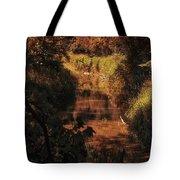 Autumn By The Argyle Creek Tote Bag