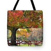 Autumn By The River On 105 Tote Bag
