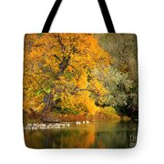 Autumn Calm Tote Bag