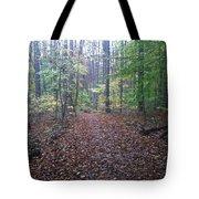 Autumn Calm Tote Bag