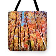 Autumn Canopy Tote Bag