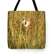 Autumn Caped Tote Bag