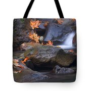 Autumn Cascades Tote Bag