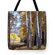 Autumn Chama New Mexico Tote Bag