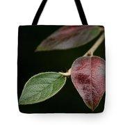 Autumn Change Tote Bag