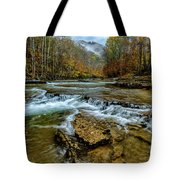 Autumn Cherry Falls Elk River Tote Bag