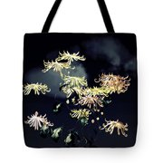 Autumn Chrysanthemums 7 Tote Bag