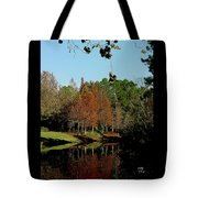 Autumn Color Reflected Tote Bag