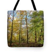 Autumn Color Reflections Tote Bag