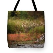 Autumn Colors 26 Tote Bag