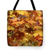 Autumn Colors 3  Tote Bag