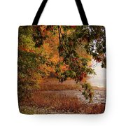 Autumn Colors 37 Tote Bag
