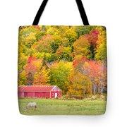 Autumn Colors Near Lake Ainslie  Tote Bag