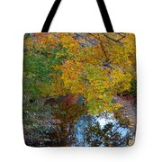 Autumn Colors Of Reflection Tote Bag