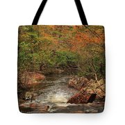 Autumn Colors On Pickle Creek 1 Tote Bag