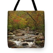 Autumn Colors On Pickle Creek 2 Tote Bag