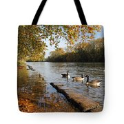 Autumn Colours At Sunbury On Thames Surrey Uk Tote Bag
