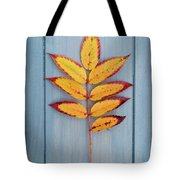 Autumn Colours On Blue Tote Bag