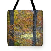 Autumn Colours Tote Bag