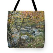 Autumn Comes To The Unami Creek Tote Bag