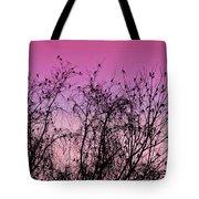 Autumn Congressional Tote Bag