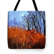 Autumn Contrasts Tote Bag