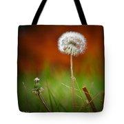 Autumn Dandelion Tote Bag