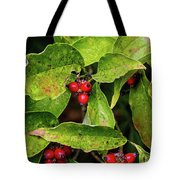Autumn Dogwood Berries Tote Bag