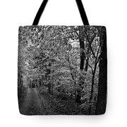 Autumn Drive Bnw Tote Bag