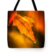 Autumn Drops Tote Bag