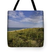 Autumn Dune View Tote Bag