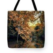 Autumn Enchantment Tote Bag