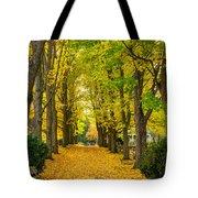 Autumn Entrance 2 Tote Bag