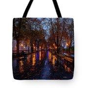 Promenade In Odessa Tote Bag