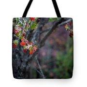 Autumn Fade Tote Bag