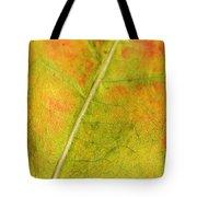 Autumn Fall Colours 1 Tote Bag