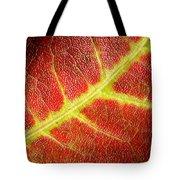 Autumn Fall Colours 2 Tote Bag