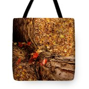Autumn Fall  Dream Tote Bag