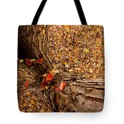 Autumn Fall Tote Bag