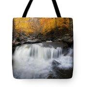 Autumn Falling Square Tote Bag