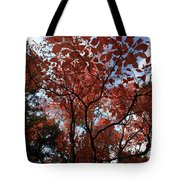 Autumn Fan Tote Bag