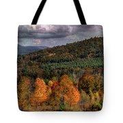 Autumn Fencerow Tote Bag