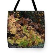 Autumn Ferns Tote Bag