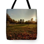 Autumn Field With Sheep Tote Bag