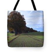 Autumn Fields, Syke, Germany Tote Bag