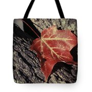 Autumn Find Tote Bag