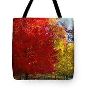 Autumn Fire  In  Red  And  Gold Tote Bag