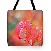 Autumn Fires Tote Bag