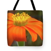 Delicate Flow, Oh, Oh, Oh Tote Bag