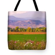 Autumn Flowers At Harvest Time Tote Bag